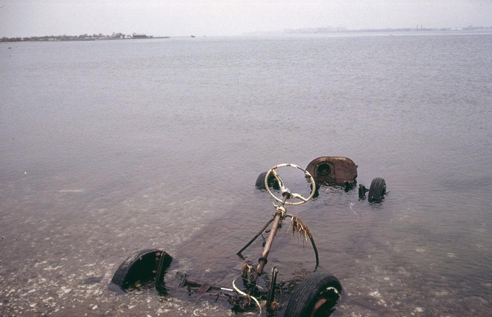 К вопросу влияния неблагоприятных факторов современной жизни на окружающую среду