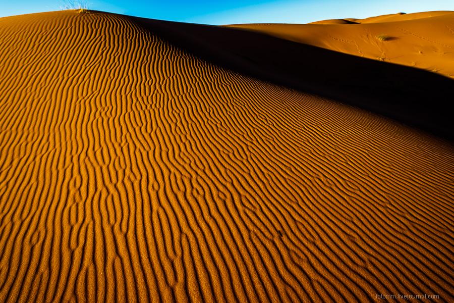 Пески времени или прогулка по пустыне Сахара