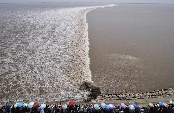 А вот туристы собрались на берегу реки Цяньтан в Китае, чтобы посмотреть на приливную волну