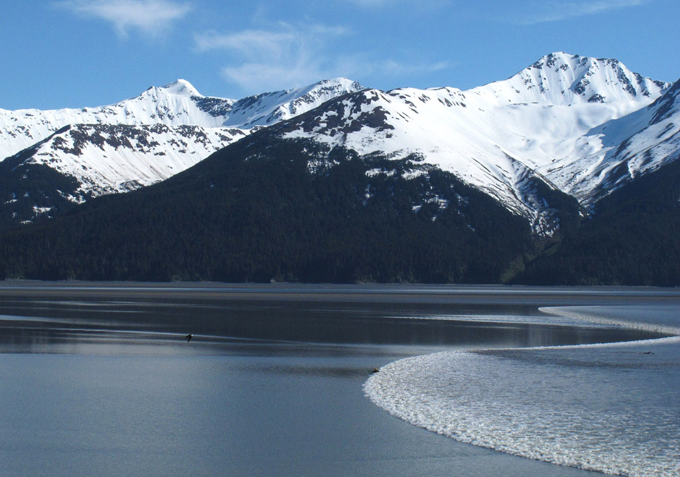 Против течения: приливная волна в Анкориджа, Аляска