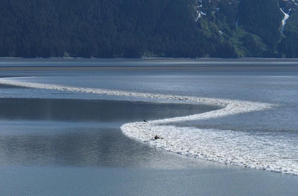 Байдарочники ловят приливную волну, Анкориджа, Аляска