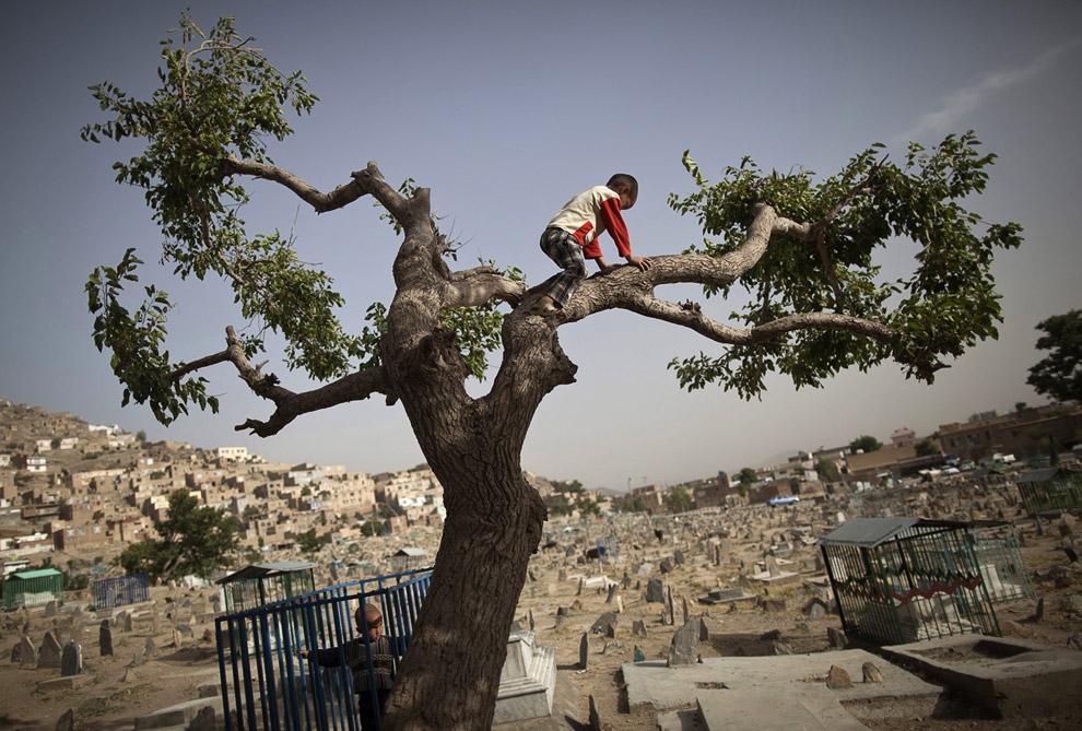 Дети на кладбище в Кабуле