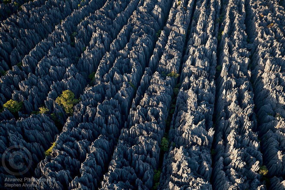 «Каменный лес» на Мадагаскаре