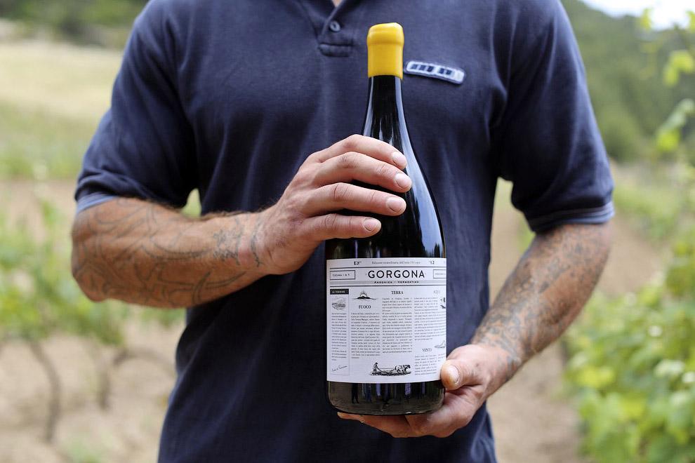 На найменшому і самому північному острові Тосканського архіпелагу відбувають термін ув'язнені, які в якості виправних робіт займаються виноробством