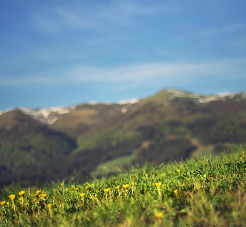 Весна на Карпатах