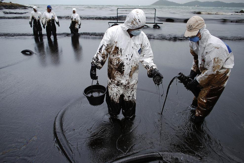 Нефть, созданная из живых организмов, на побережье представляет огромную опасность для всего живого