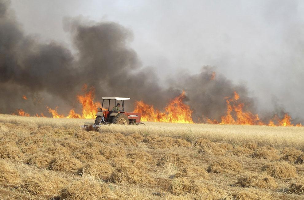 Поля зерновых в огне после очередного обстрела, Сирия