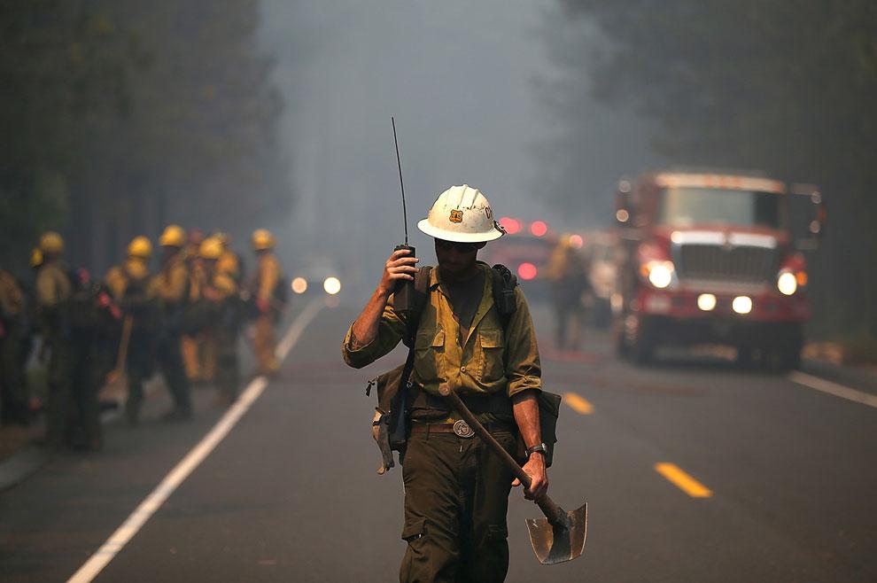 Сотрудник лесной пожарной службы