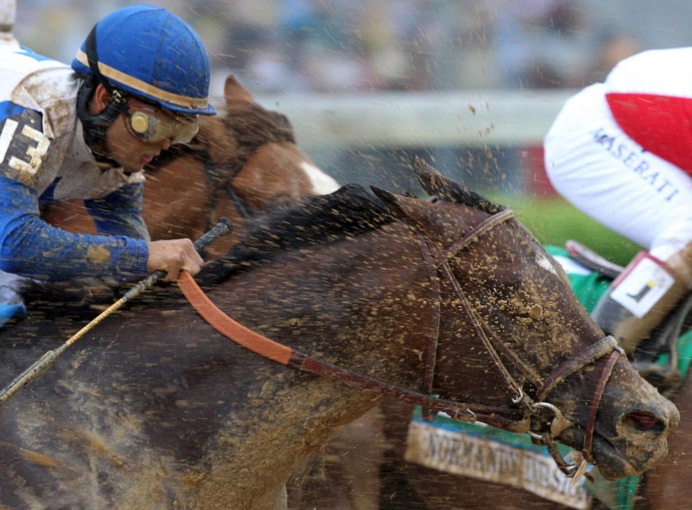 Вот так несладко приходится наезднику и его лошади во время заезда