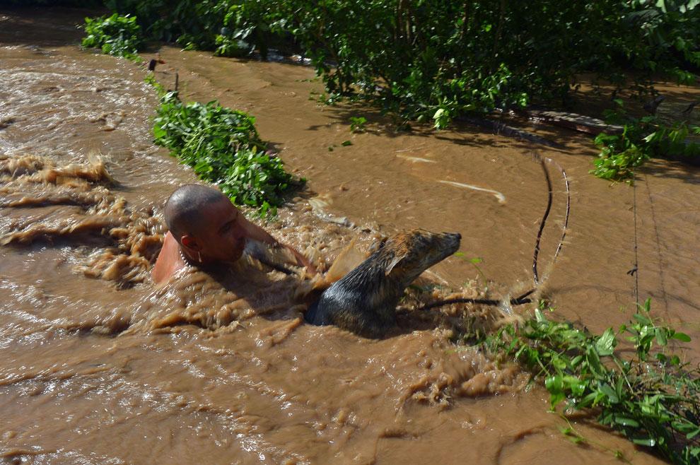 Человек спасает свою собаку от паводковых вод после урагана Мануэль в Мексике