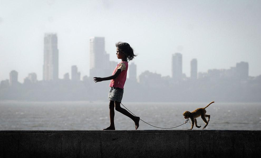 Девочка гуляет со своей обезьянкой на набережной у Аравийского моря в Мумбаи