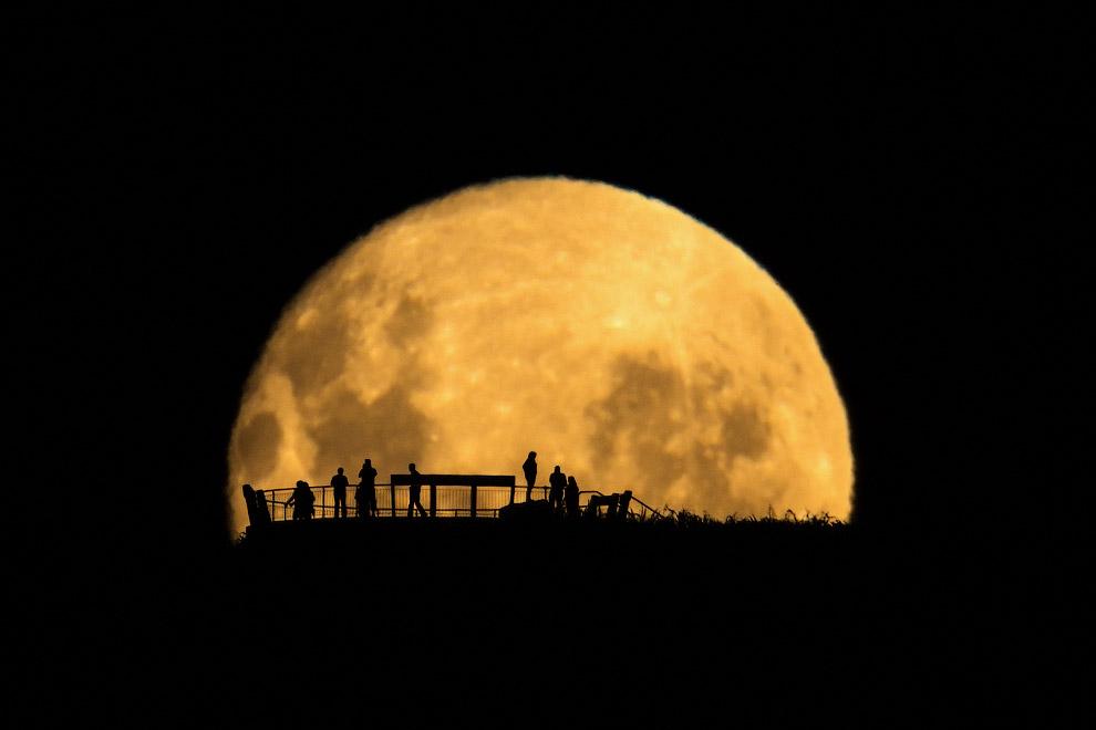 Силуэты на фоне восходящей Луны