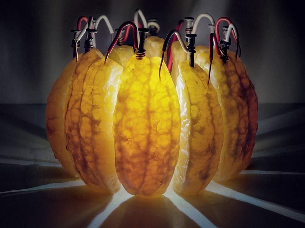 Энергия апельсина, США