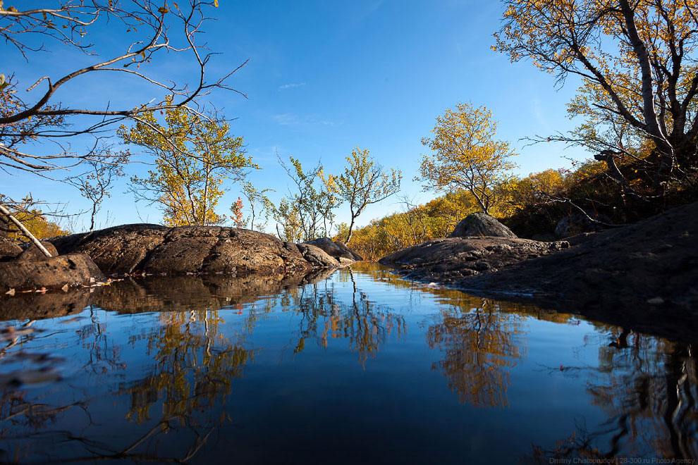 Золотая осень на Кольском полуострове