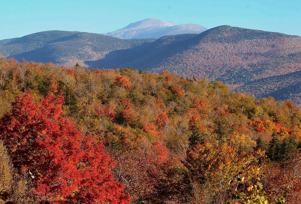 Национальный лес Белой горы, расположенный в штате Нью-Гэмпшир