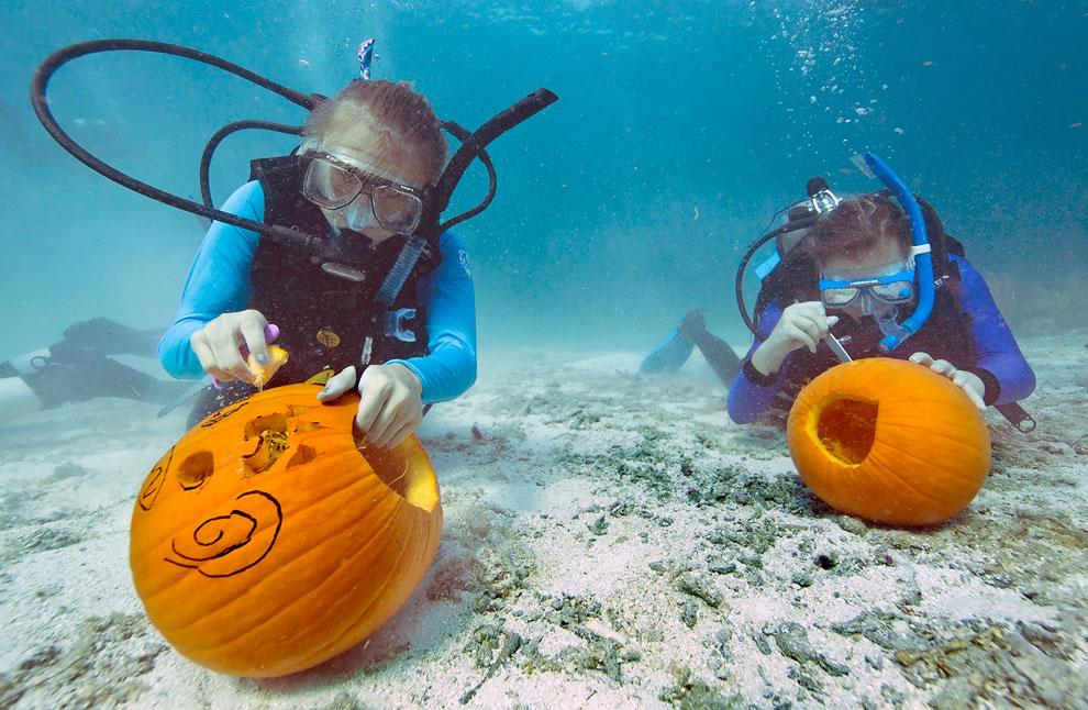 Конкурс среди дайвером по подводному изготовлению фонарей Джека из тыквы, штат Флорида