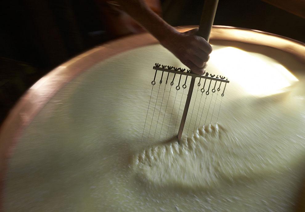 Швейцарские сыроделы
