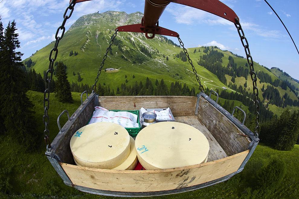 После того, как первый этап приготовления сыра окончен, он отправляется в хранилище для дальнейшего созревания