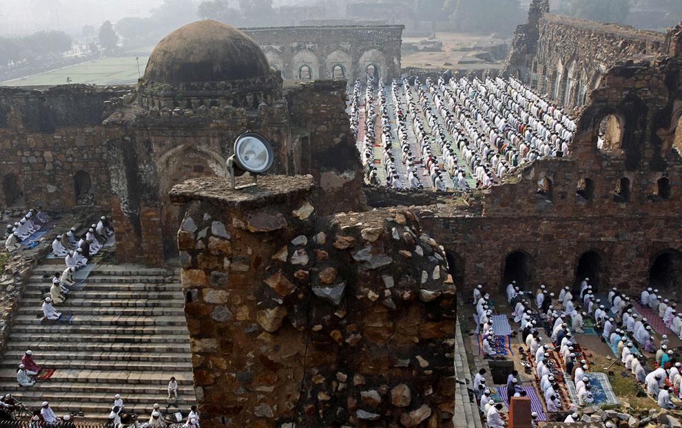 Праздник жертвоприношения в Нью-Дели, Индия