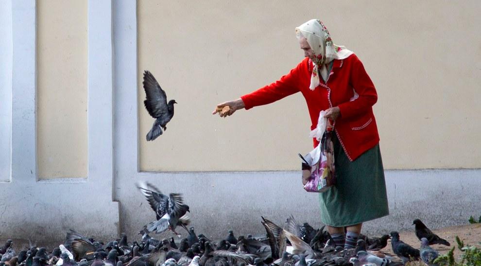 Бабушка кормит голубей рядом с Александро-Невской лаврой в Санкт-Петербурге