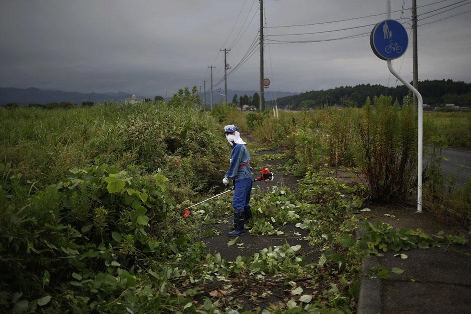Рабочий срезает густую растительность, которая заполонила город-призрак Намие в префектуре Фукусима