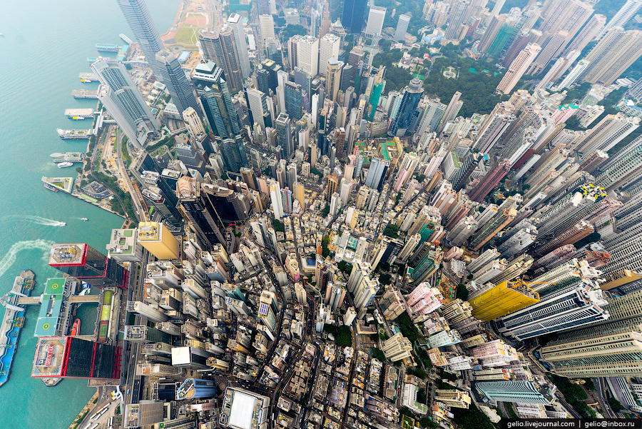 Гонконгский лес небоскребов