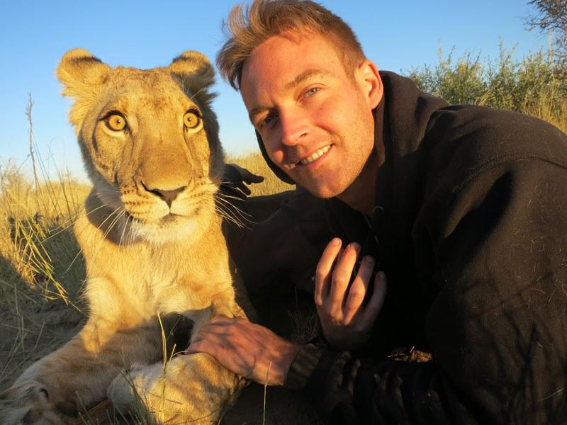 Лицом к лицу со львами в Ботсване