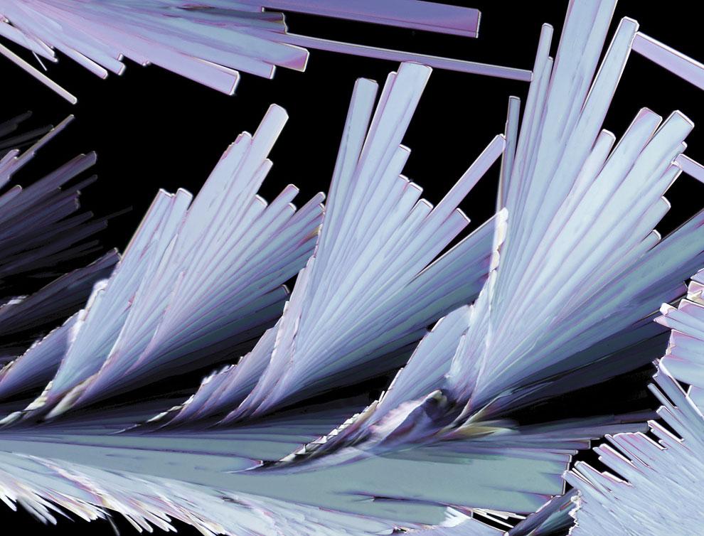 20-кратное увеличение кристаллов сульфосалициловой кислоты