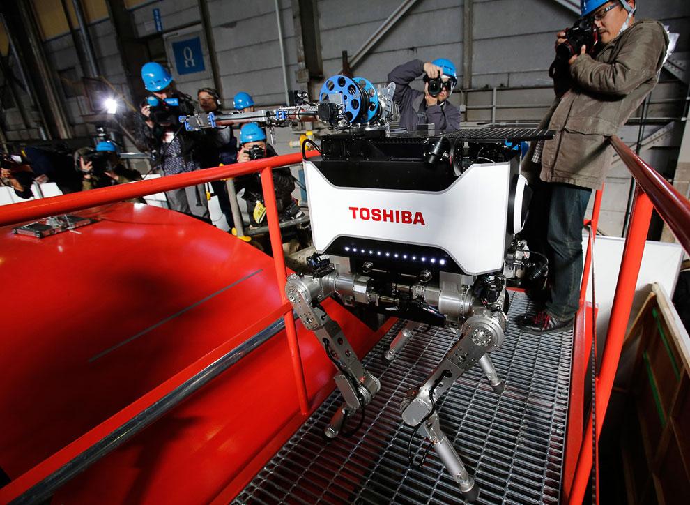 Новый четвероногий робот от компании Тошиба