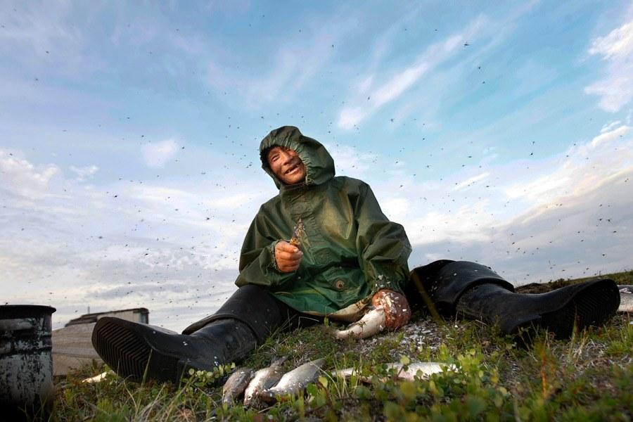 Западная Сибирь, полуостров Ямал. Фоторепортаж о жизни ненцев-оленеводов