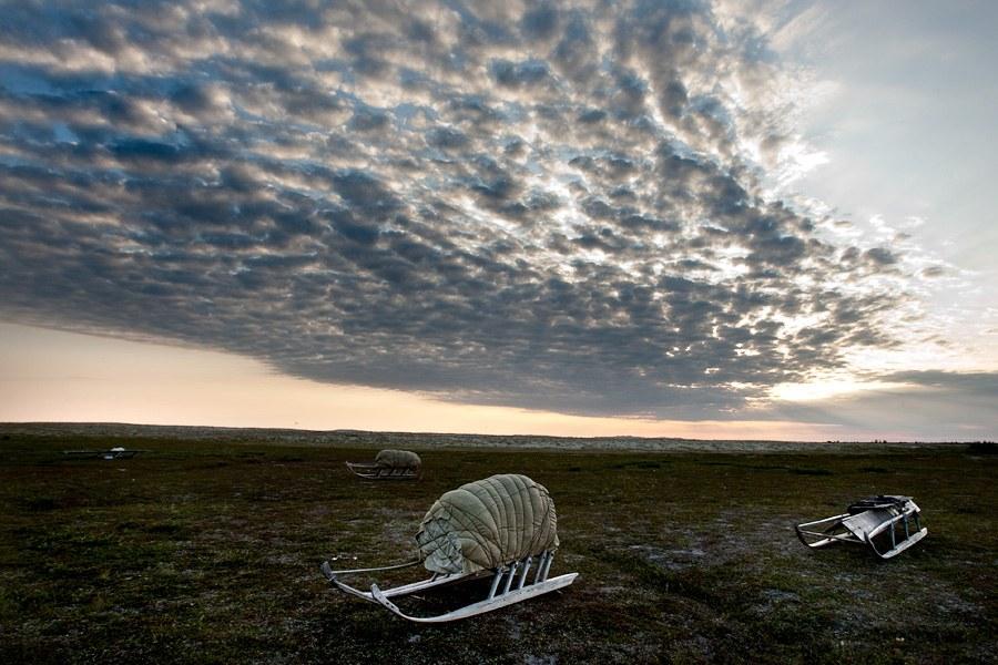 Полуостров Ямал. Фоторепортаж о жизни ненцев-оленеводов