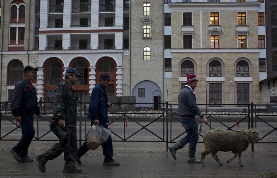 Мигранты с овцой в поселке Красная Поляна