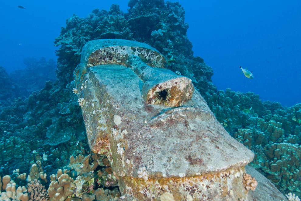 Моа́и — каменные монолитные статуи на тихоокеанском острове Пасхи, принадлежащем Чили. Этот был затоплен в 1994 году у побережья острова Пасхи для съемок голливудского фильма