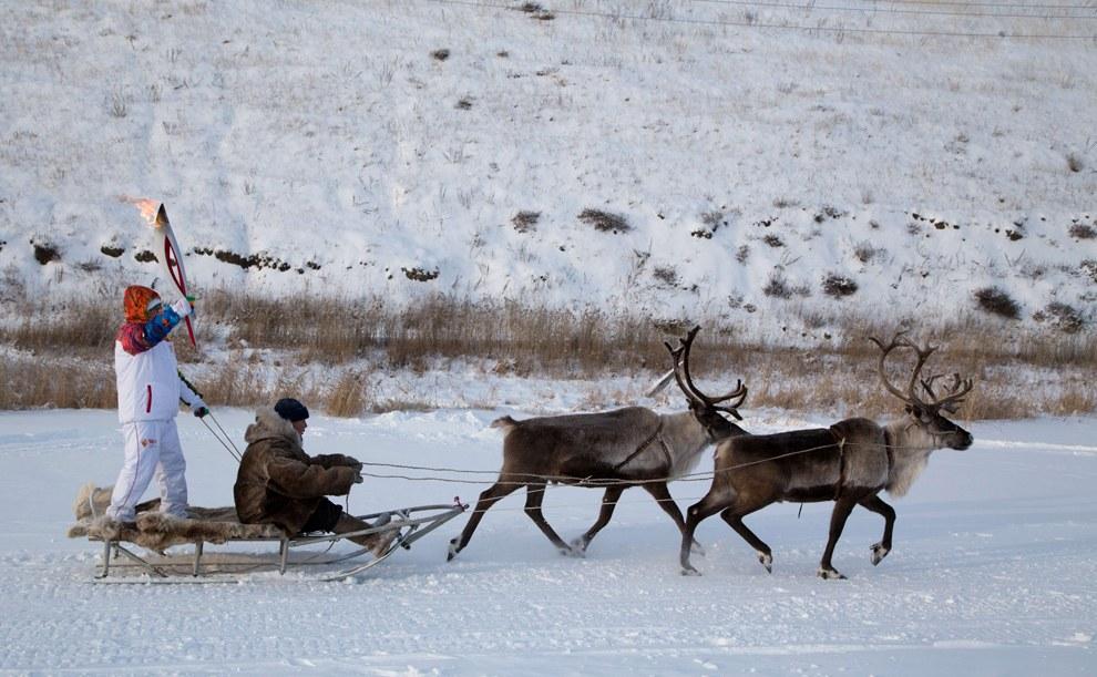 Эстафета на оленях в окрестностях Якутска