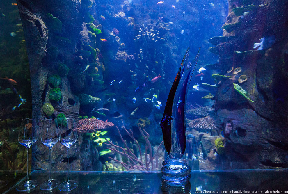 Подводный ресторан в Дубае