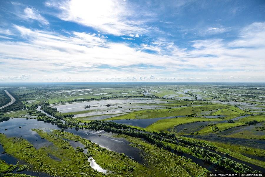 Природа в окрестностях Барнаула