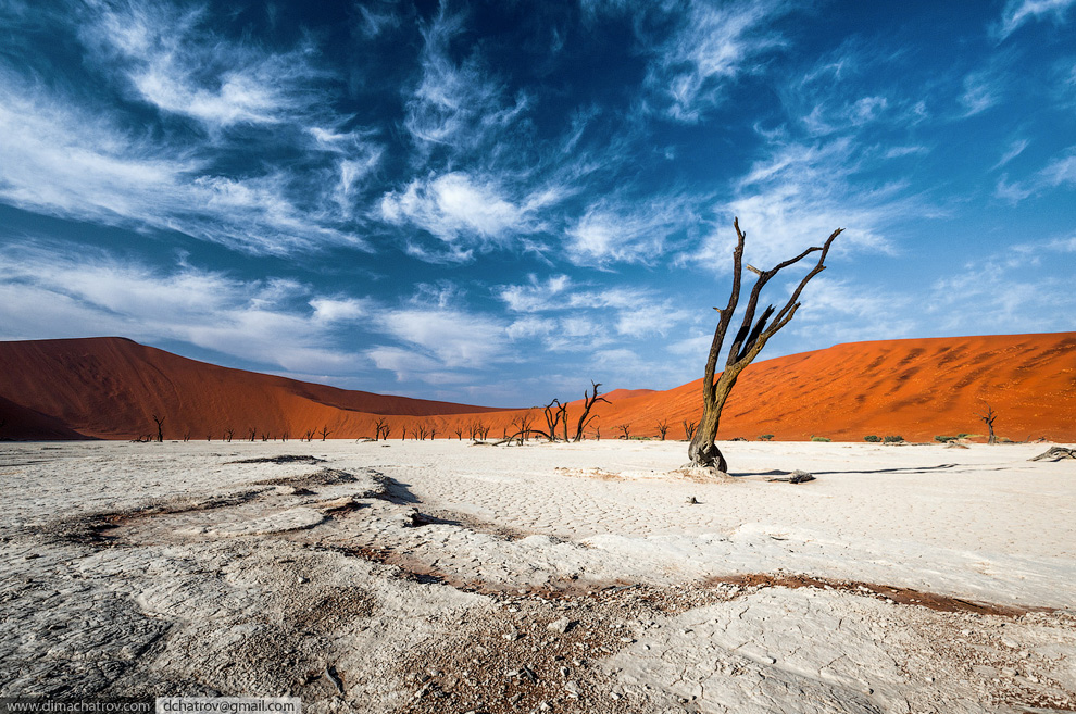 Пустыня Намиб. «Мертвое болото»