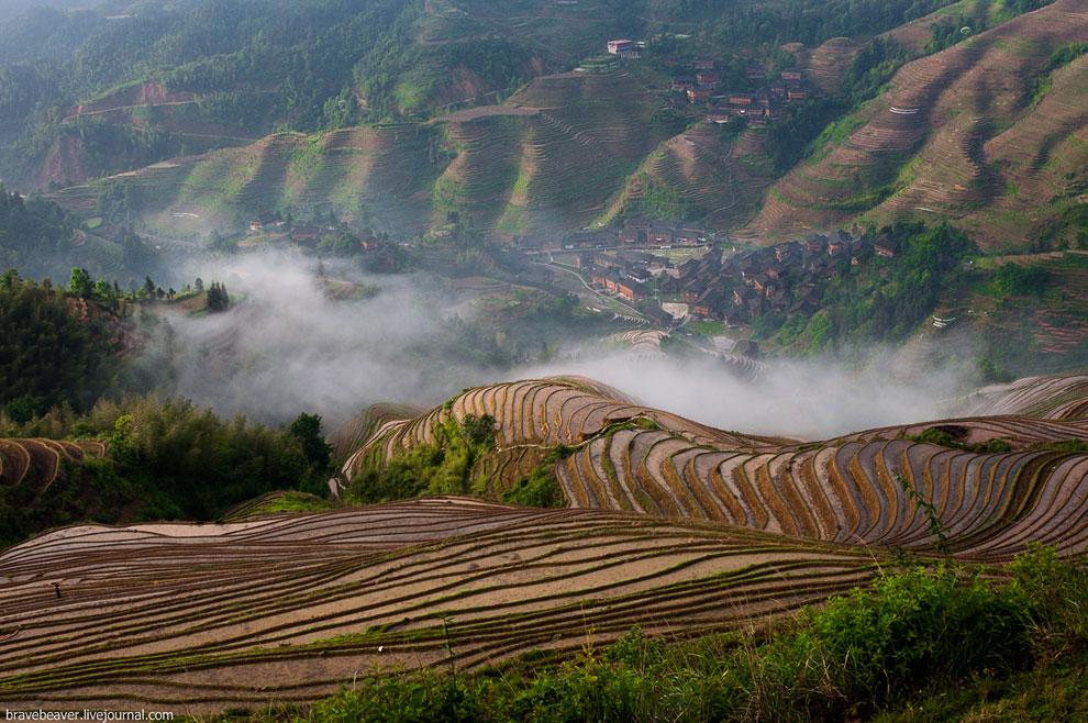Рисовые террасы в Лонгшень