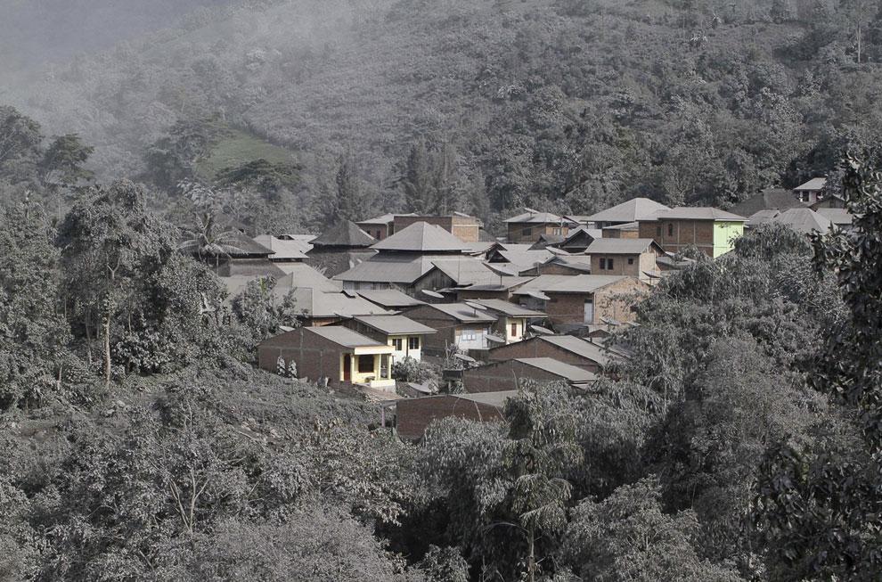 Покрытые пеплом деревья и домики