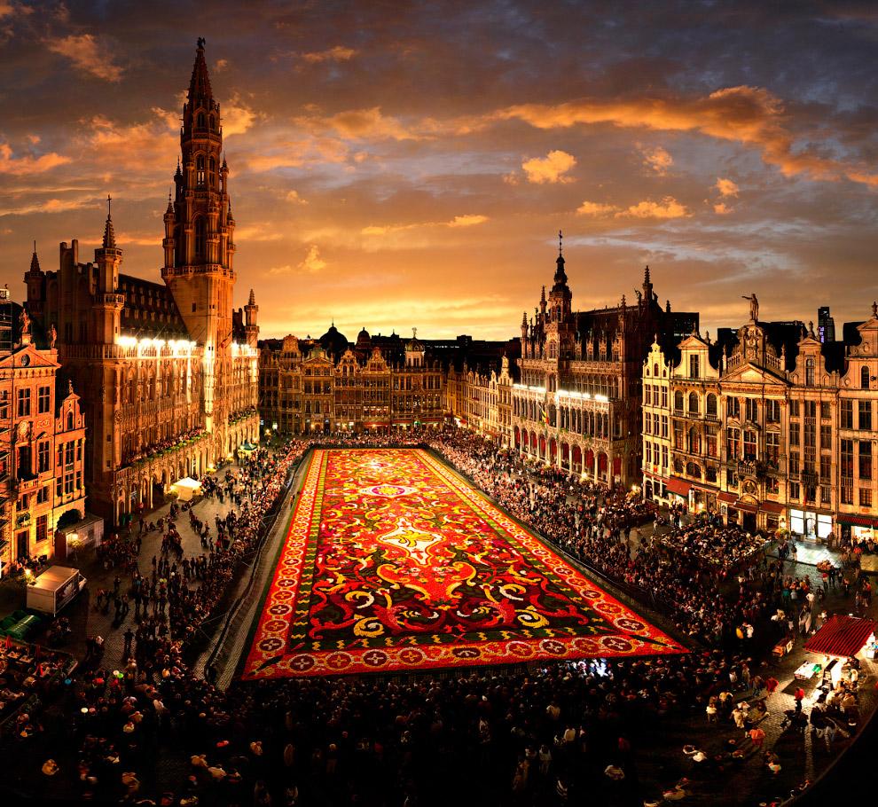 Раз в два года в Брюсселе в августе центральную площадь Гран Плас накрывают цветочным ковром