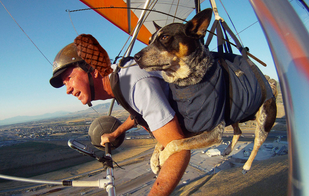 Тренер по параглайдингу и дельтапланеризму с 37-летним стажем Дэн Макманус и его собака Шэдоу