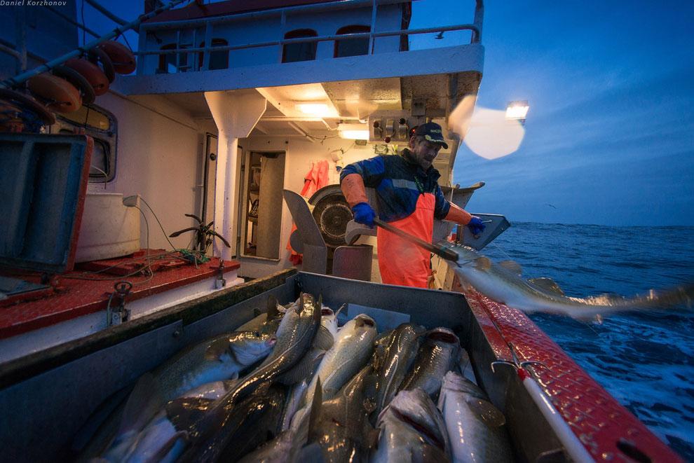 Как ловят рыбу в Норвегии