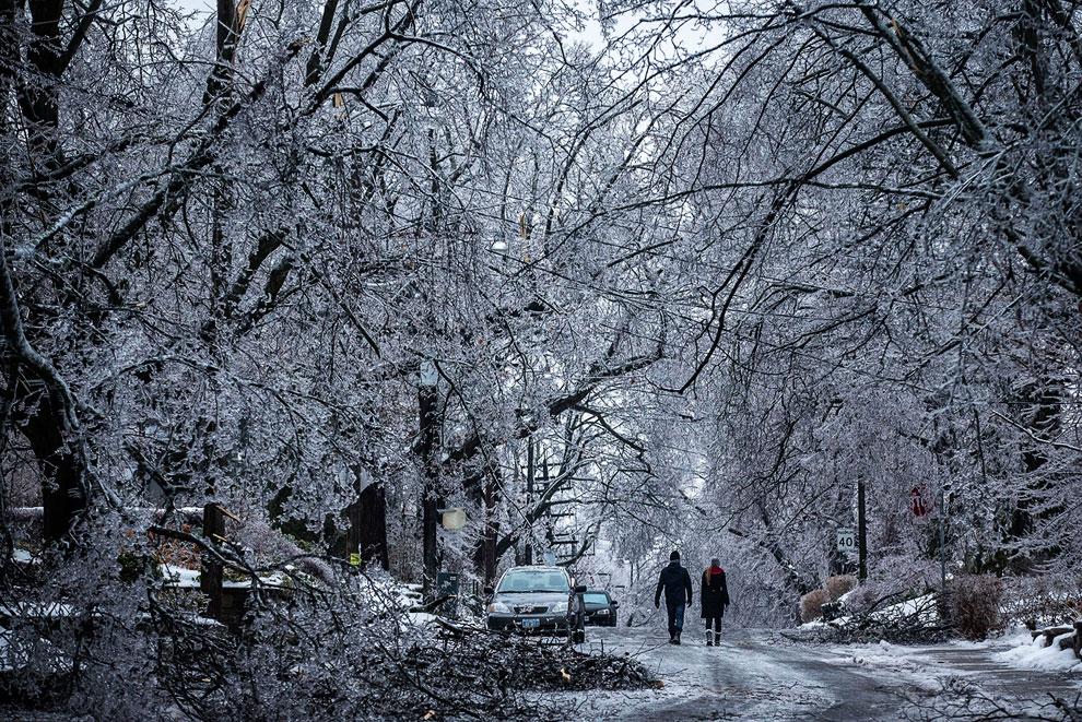 Ледяной дождь в Торонто