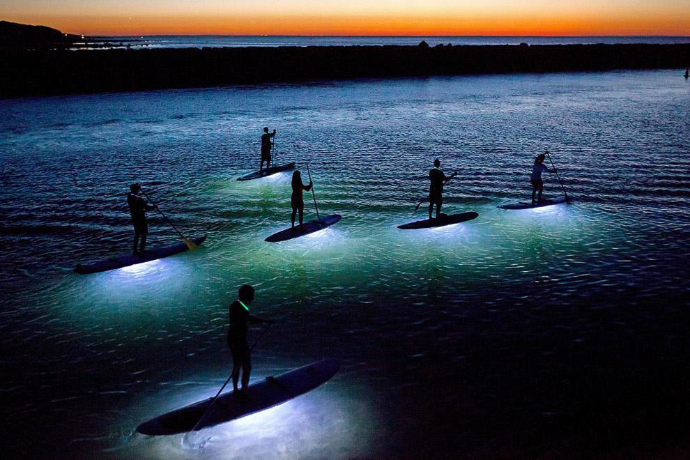 Специально сделанные водонепроницаемые светодиодные фонари крепятся к основанию лодок и освещают воду, позволяя гребцам увидеть рыбу