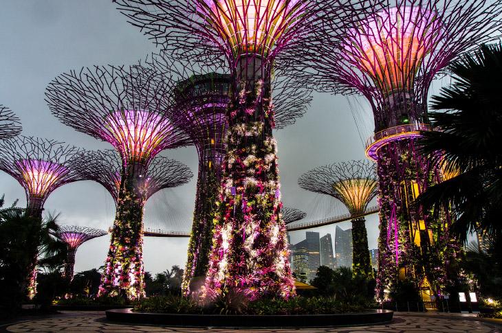 Сингапур: футуристические Сады в заливе