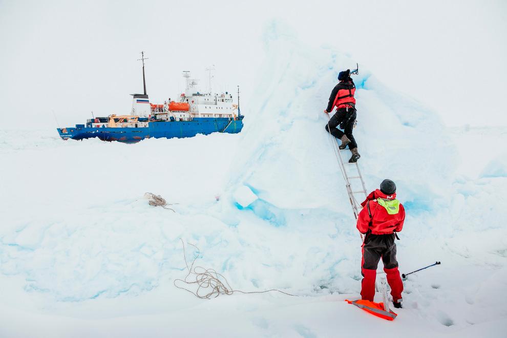 А ученые, ожидая спасения, занимались научными делами в Антарктиде