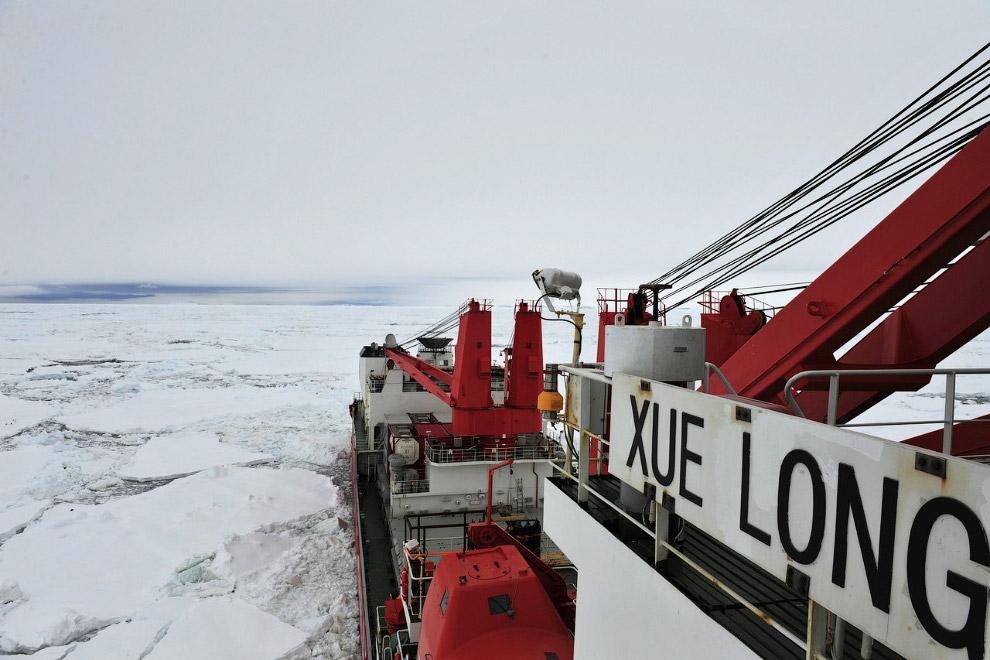 Китайский ледокол «Снежный дракон» идет спасать «Академика Шокальского»