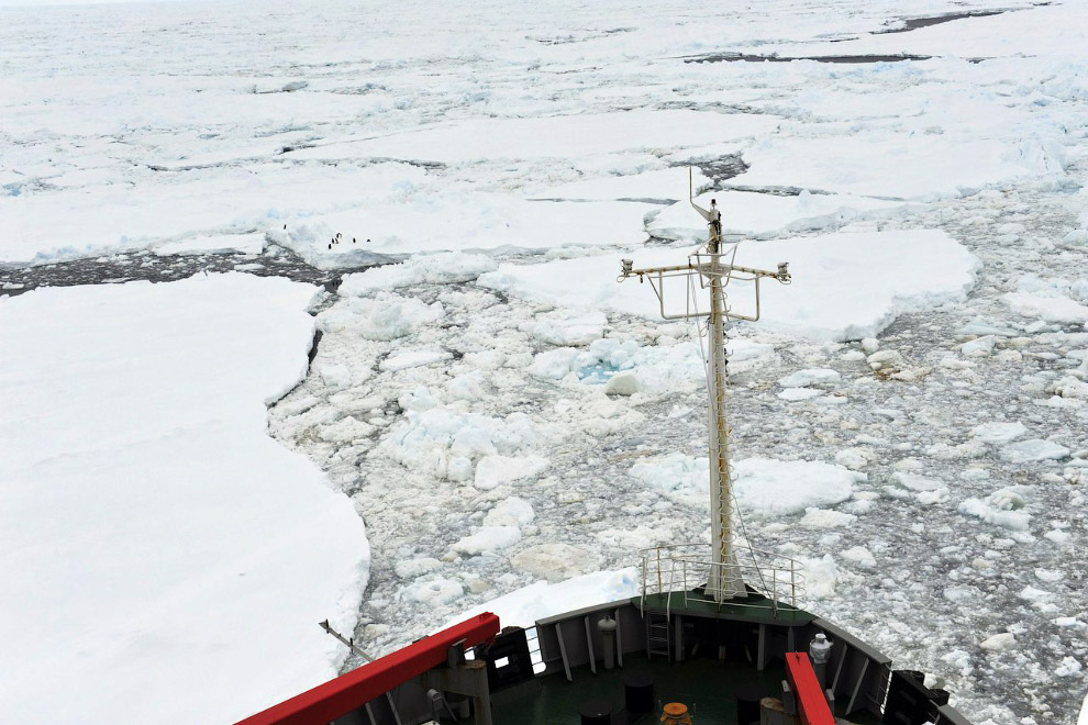Вид с китайского ледокола «Снежный дракон», спешащего на помощь