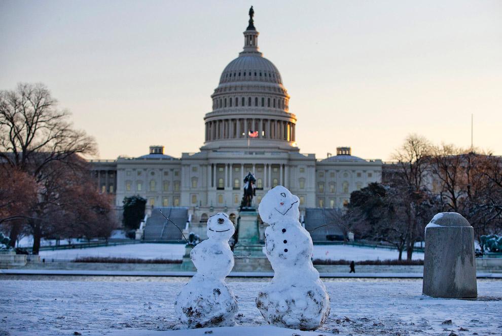 Снеговики перед Капитолием в Вашингтоне