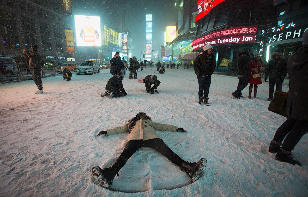 Ледниковый период по нью-йоркски